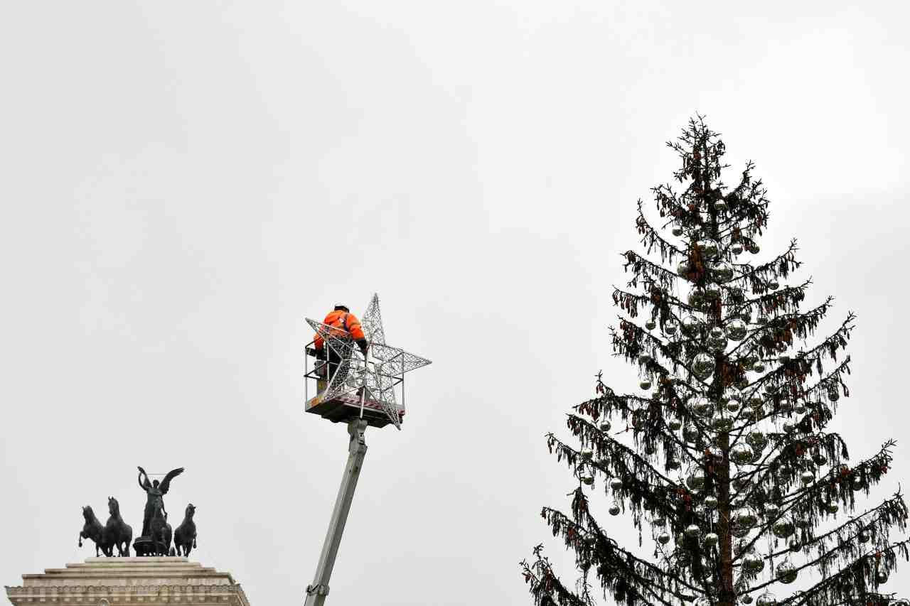 Spelacchio albero Natale Roma