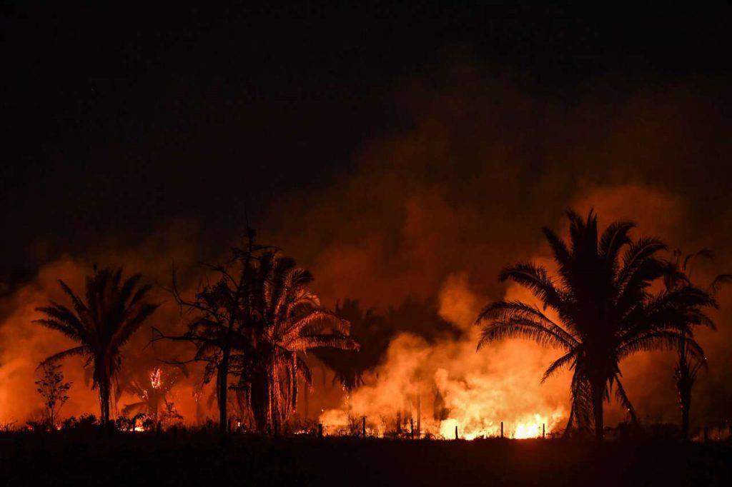 Leonardo Di Caprio guai Amazzonia incendi