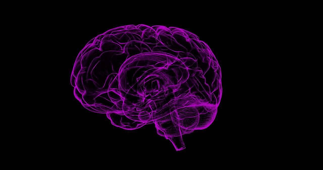 Alzheimer, scoperta molecola per la cura del Morbo