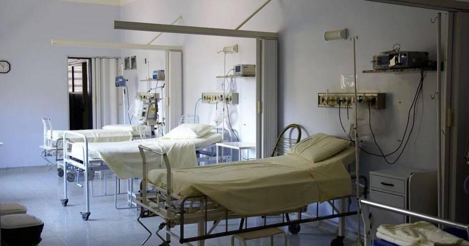 eutanasia olanda demenza
