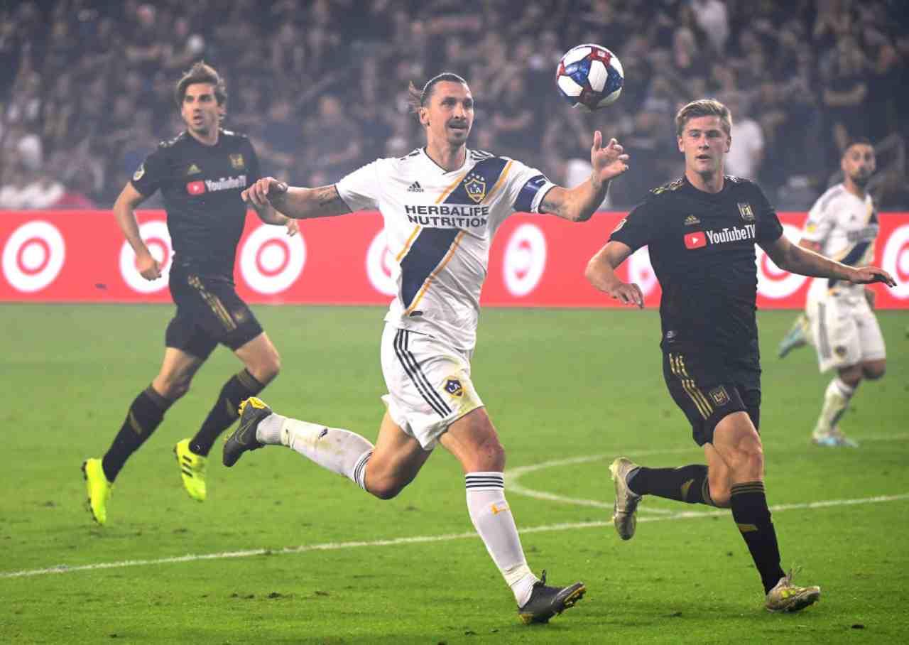 Zlatan Ibrahimovic, Everton