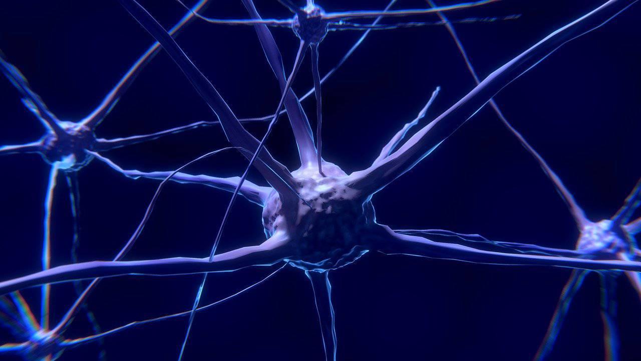 Casey Stoner, sindrome da affaticamento cronico