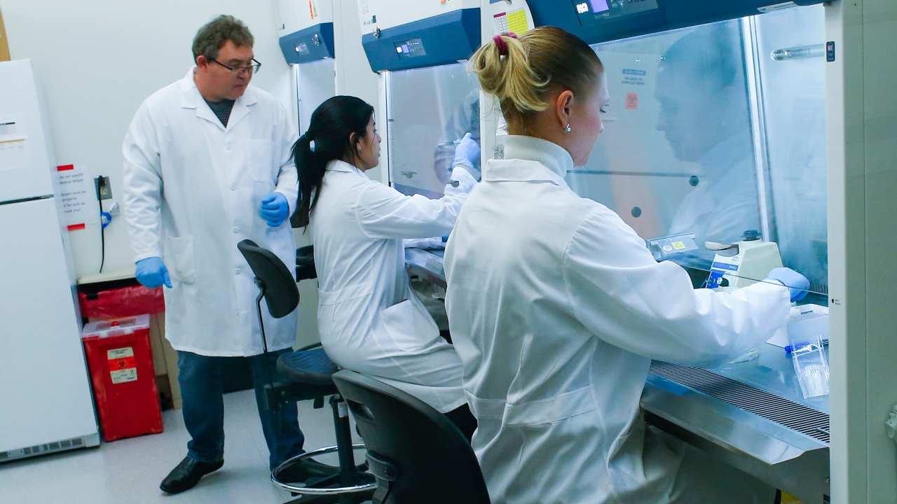 Coronavirus roma medici umberto