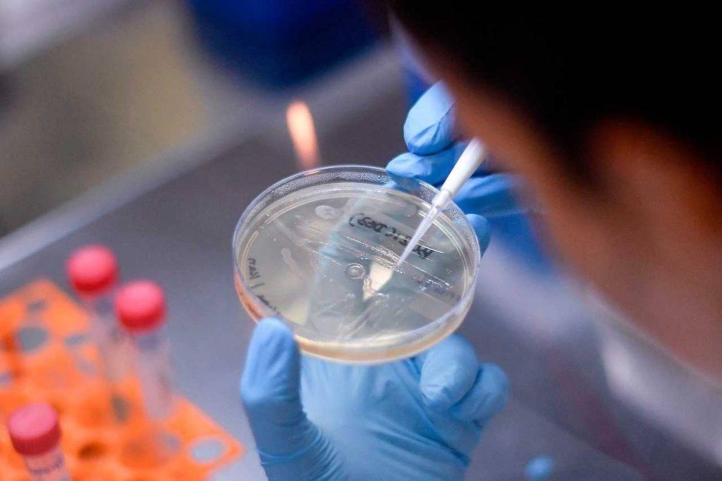 Coronavirus test Italia