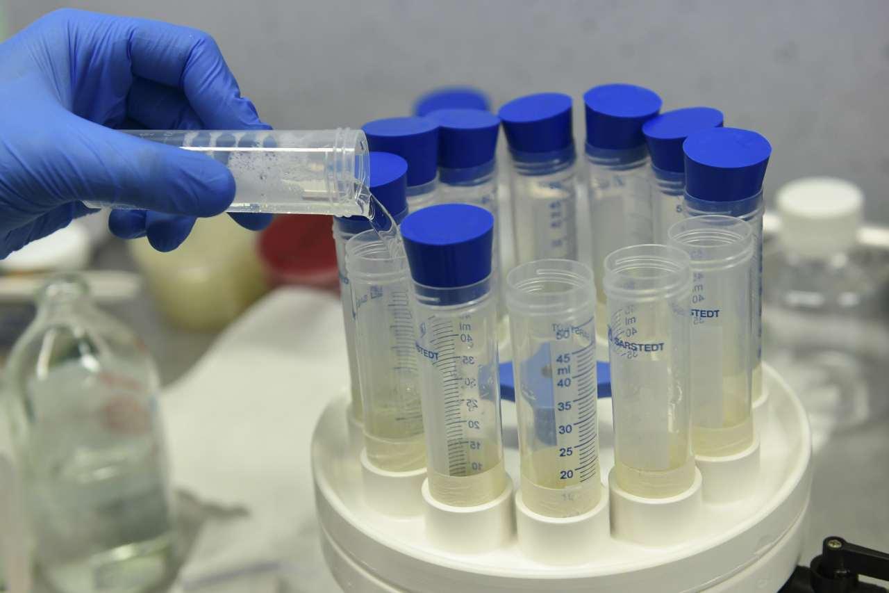 Cure Coronavirus Brescia