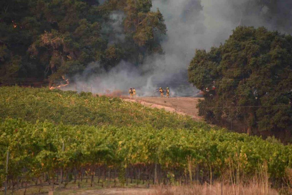 California, dichiarato lo stato di emergenza per gli incendi