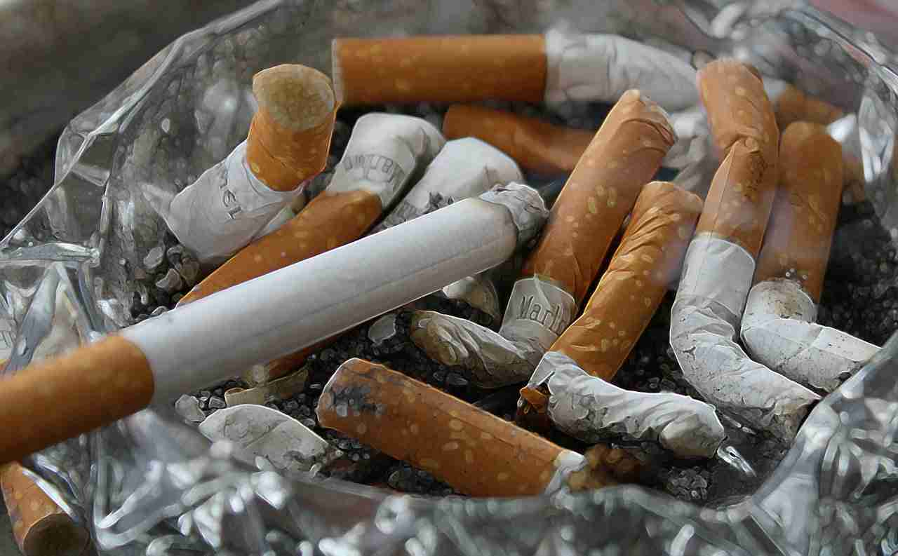 francia tabacco