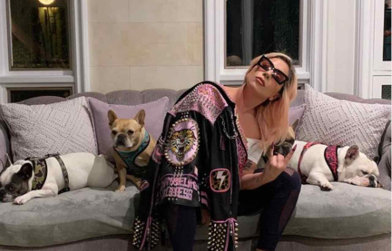 Lady Gaga e i suoi cani rapiti