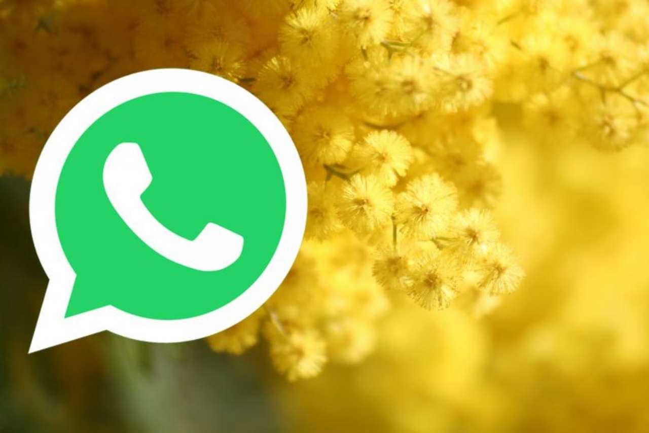 WhatsApp festa donna