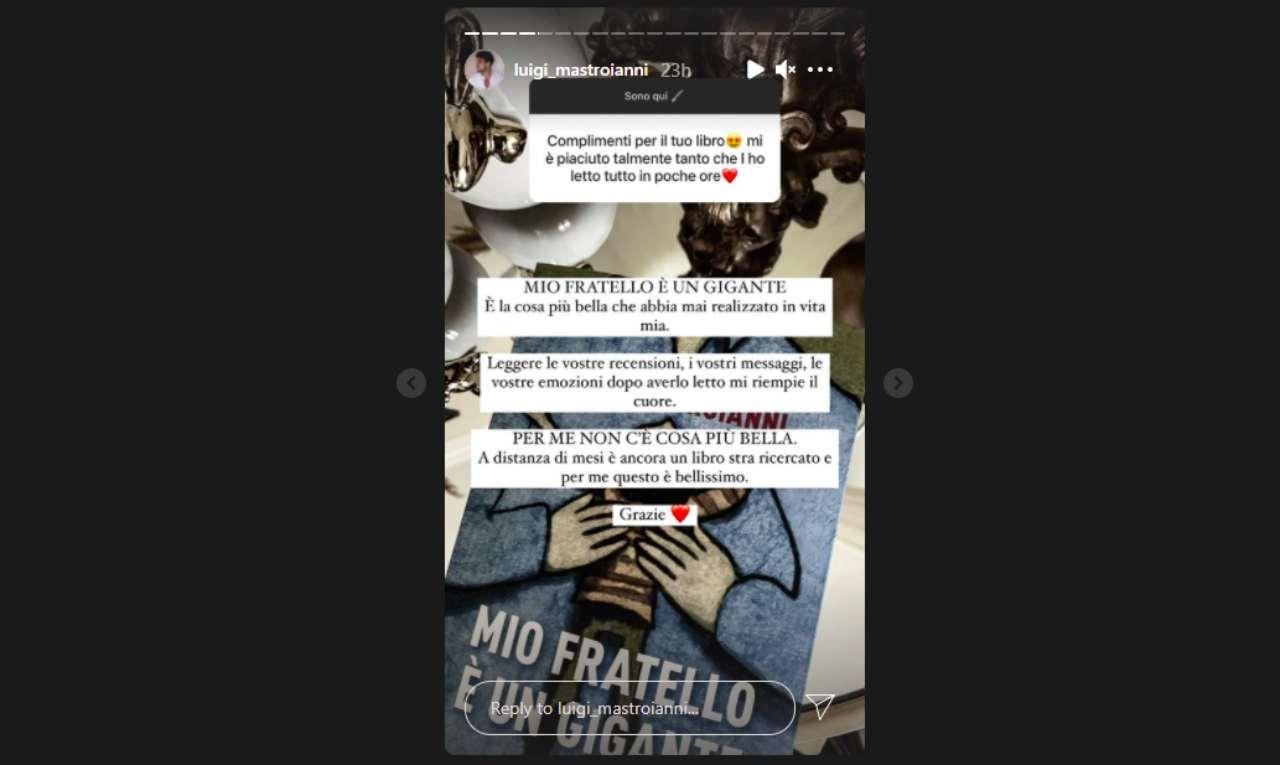 L'ex tronista Luigi Mastroianni risponde ai fan (Storie Instagram).