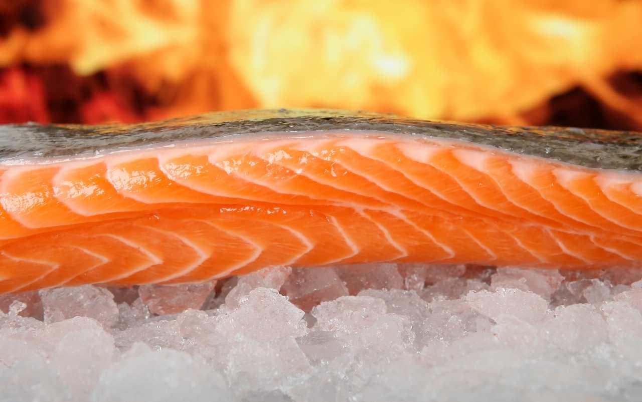 Richiami alimentari, ritirato pesce per scadenza errata